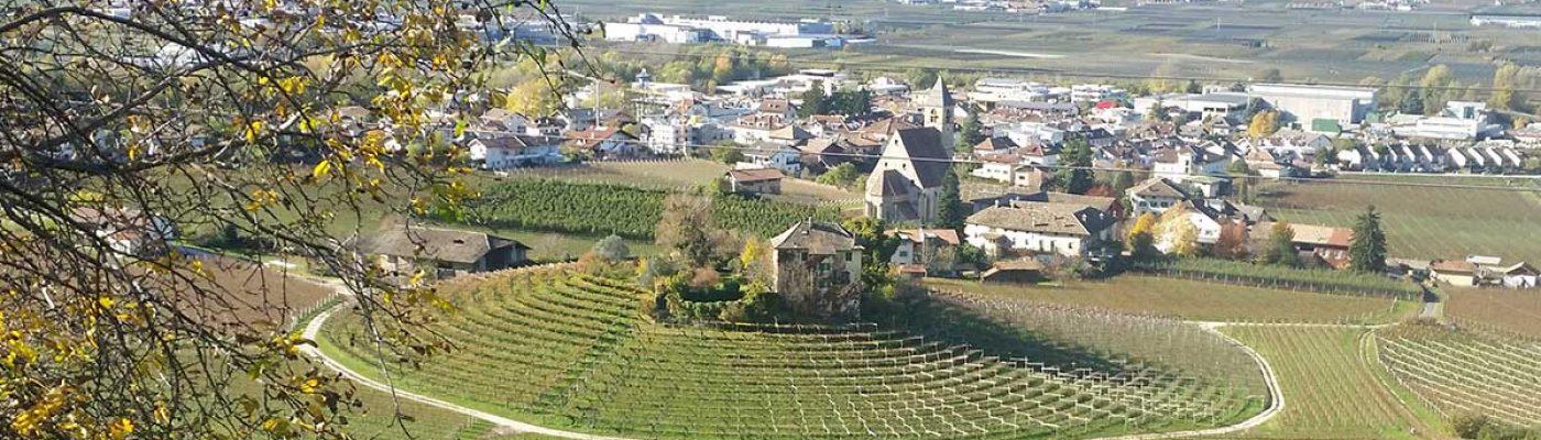 Villa Ruggero Wine Hotel vigneti